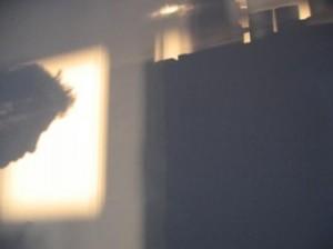 Shadow I.